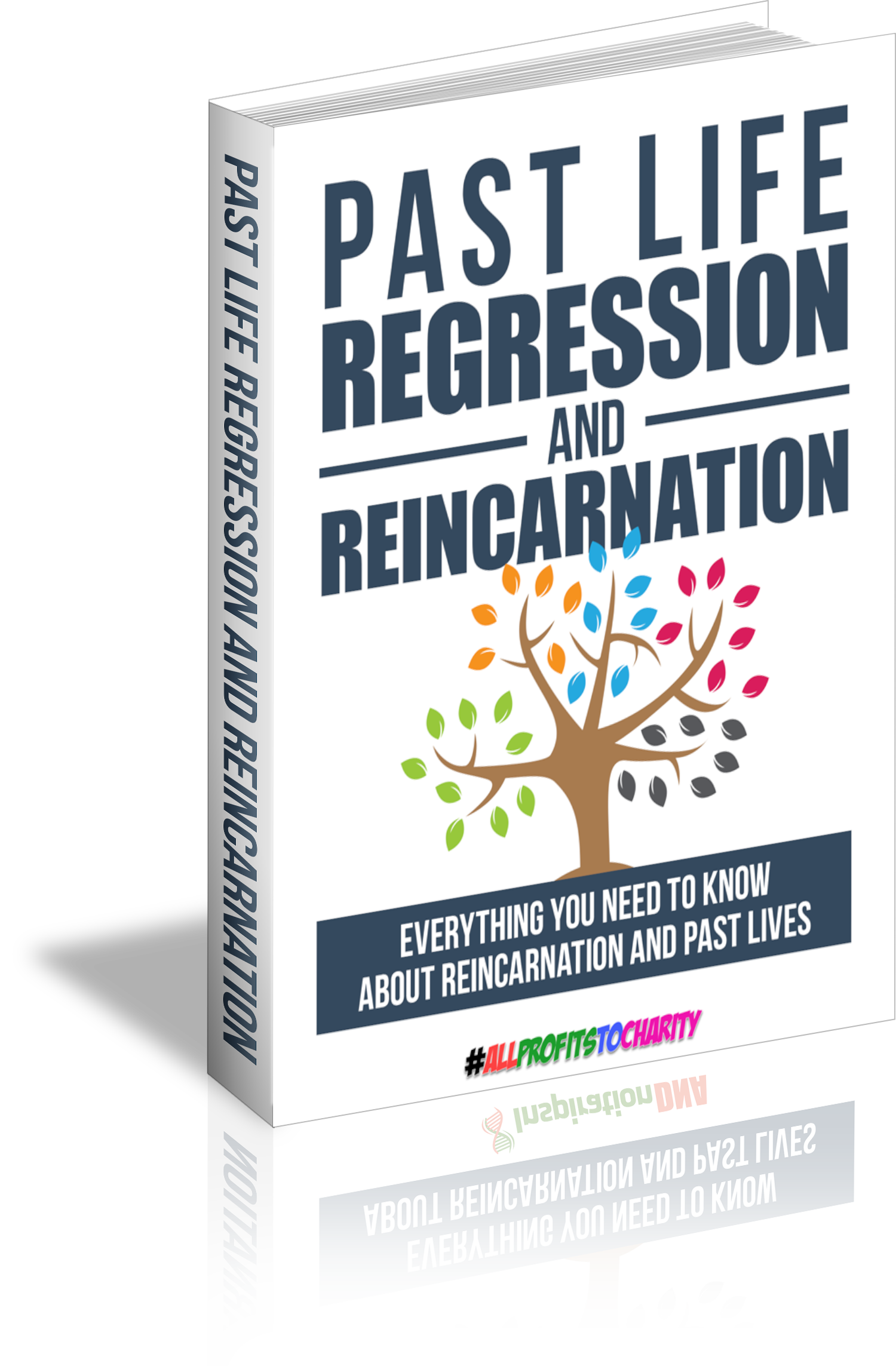Past Life Regression And Reincarnation cover