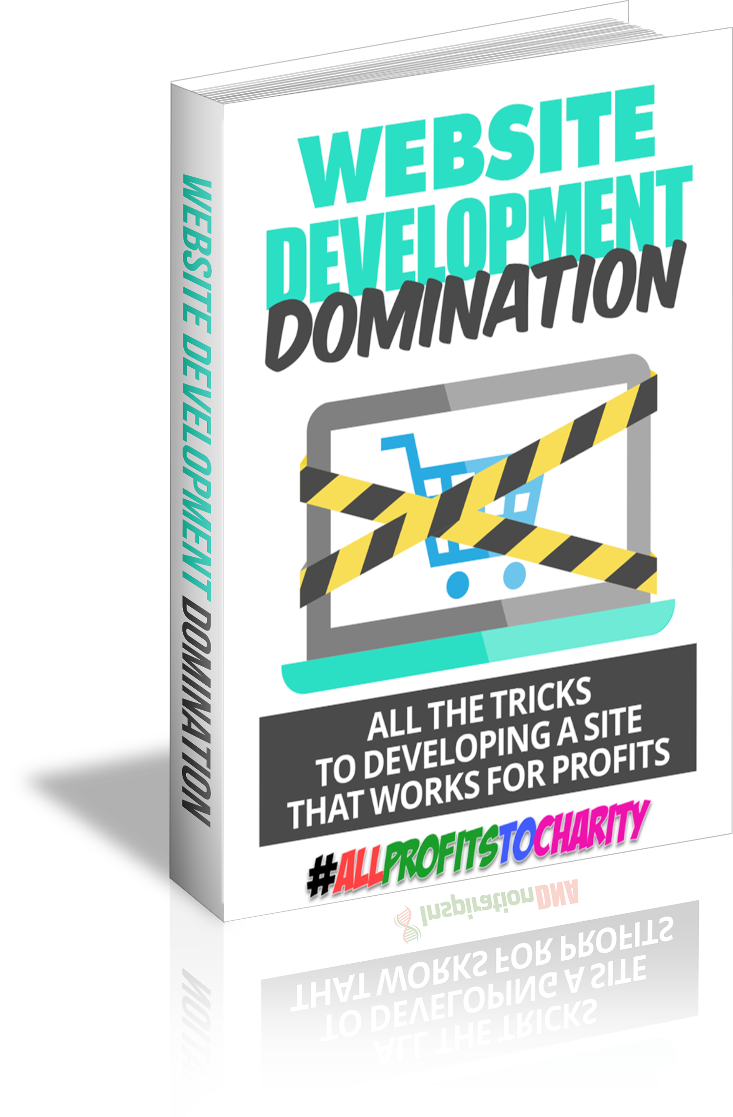 Website Development Domination cover